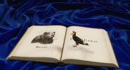 Jungle-book-2016-disneyscreencaps.com-11464