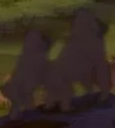 Lion King 1994 Apes