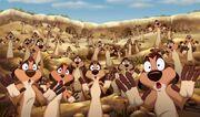 Timon's meerkat colony
