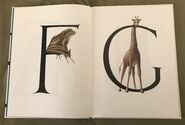 Animal Alphabet (Bert Kitchen) (4)