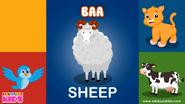 Ebubuzz Kids Sheep