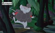 Rescuers-down-under-disneyscreencaps.com-4189