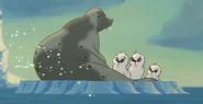 TLM2 Seals