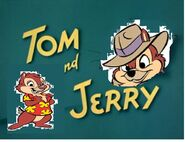 Chip and dale aka tom and jerry