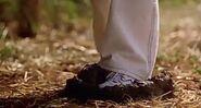 Cody steps in cow poop, Yuck!