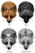 FoxColors