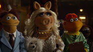 Miss piggy what