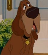 Trusty in Lady and the Tramp