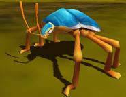 Shield Bug IC