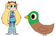 Star meets Domestic Pigeon
