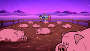 TTG Pigs