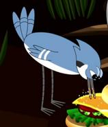The Problem Solverz Blue Jay