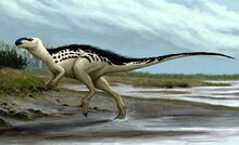 Burianosaurus augustai-novataxa 2017-Madzia Boyd et Mazuch
