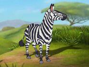 Rileys Adventures Grant's Zebra