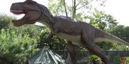 San Antonio Zoo T-Rex