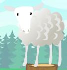 Sheep mib