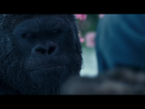 Luca (Planet of the Apes)