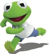 Baby Kermit 2018