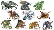 Chromatic and Metallic Dragons