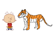 Stanley Griff meets Bengal Tiger