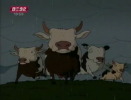 Wild Thornberrys Cows