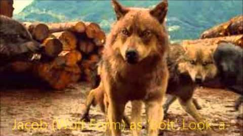 Humphrey (Bolt) Cast Video