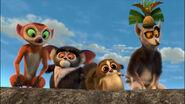 Lemurs Four TPC