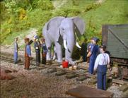 TTTE African Elephant