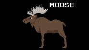 KPS Moose