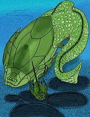 220px-Asterolepis ornata