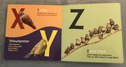 ABC Birds (American Museum of Natural History) (8)