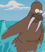 Homer Walrus