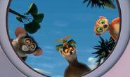 LemursThreeHBMWS