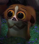 Mort in Madagascar