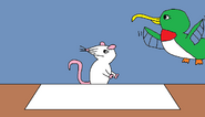 Mouse and Hummingbird