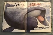 The A to Z Book of Wild Animals (20)