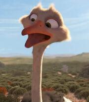 Bradley the Ostrich