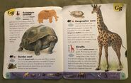 Extreme Animals Dictionary (9)