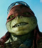 Raphael 2014