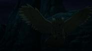 Beast Boy as a Owl