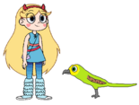 Star meets Budgie