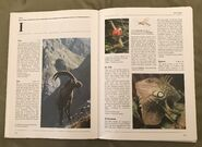 The Kingfisher Illustrated Encyclopedia of Animals (76)