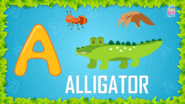 Baby Time Alligator