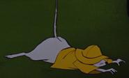 Bernard fall down 3