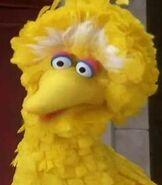 Big Bird in The Adventures in Elmo in Grouchland