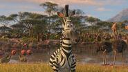 Madagascar2-disneyscreencaps.com-2819