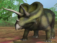 Triceratops dbwc