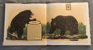 Gone Forever! An Alphabet of Extinct Animals (2)