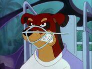 Muzzle 3