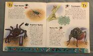 Bug Dictionary (22)